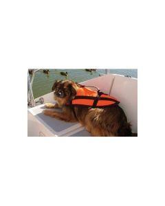 Hundeschwimmhilfe in Orange